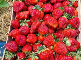 Cumpar căpșune,  cireșe