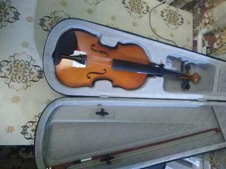 Vind viola alt+arcus+husa+salciz