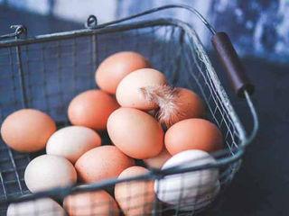 Яйца куриные домашние  / Oua de casa