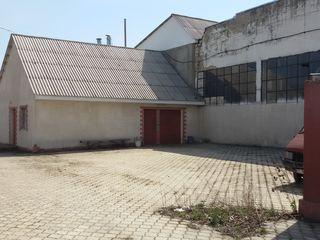Производственный комплекс (бывший колбасный цех)