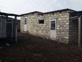Se vinde urgent casa in satul Borosanii noi