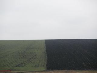 Vind lot de pământ arabil,Briceni