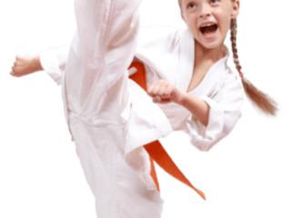 Объявляет набор для занятий Taekwondo wtf (ботаника)