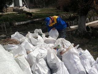 Transportare gunoi вывоз мусора !