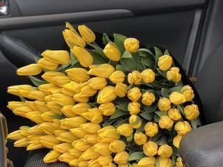 Livrăm 101 trandafiri, compozitii din 51,101,201,301 lalele la pret de 15 lei!