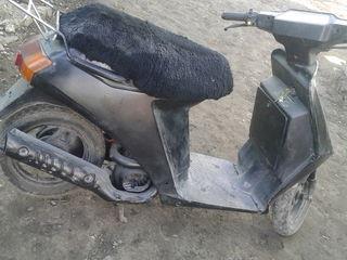 Suzuki skuter