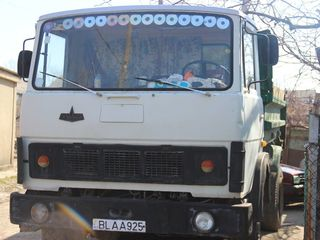 Maz Diplomat 5551
