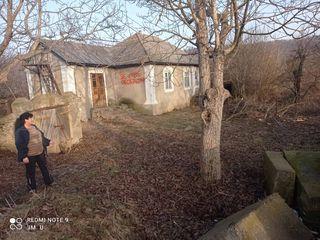 Дом на берегу Днестра