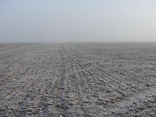 Cumpăr teren agricol în raionul Drochia / Chetrosu