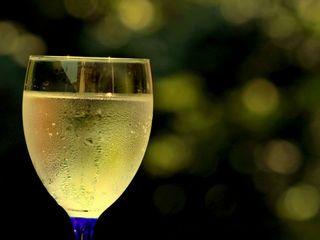 Совиньон - домашнее вино