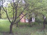 Продаю земельный дачный участок 6 соток в Иванче в живописном месте!