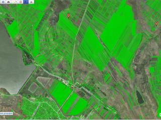 Vind 25 ari agricol, marginea satului Costesti, r.Ialoveni (langa sosea)