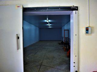 Depozit frigorific,Singera/Floreni 5 km de la chisinau, 360 mp