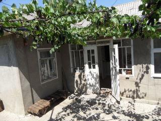 Продаем дом в г.Сынжерей (Лазовск). Срочно