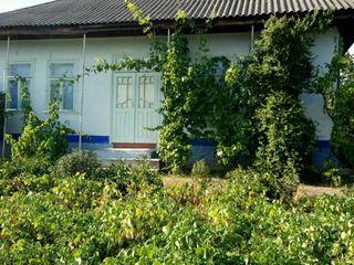 Spre vinzare casa de locuit in satul Nicoreni