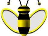 Cumparam miere de albini.Закупаем пчелиный мёд