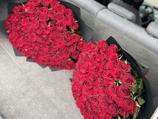101 Trandafiri 90cm pret 2100 lei