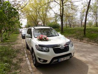 Transport  pentru ceremonii