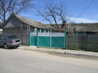 casa in Taraclia de salcie