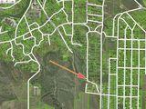 Sîngera - Teren de Construcții / Casă, 28 ari lângă pădure.
