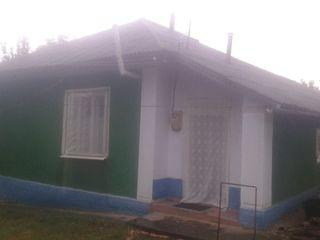 Casa Raionul Drochia sat.Pelenia
