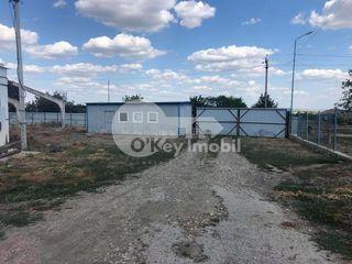 Teren cu destinație pentru construcții, 160 ari, Dondușeni, 220000 €