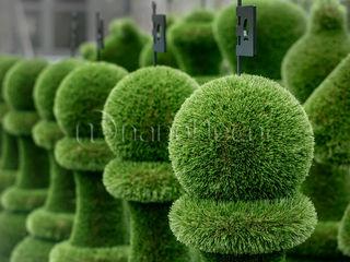 Figuri topiary. Топиари - фигурные