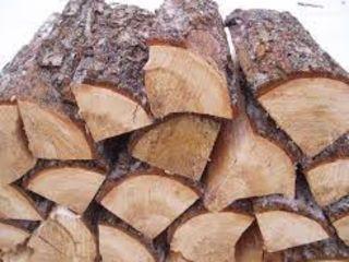 Lemne de foc specii tari (stejar,frasen,carpen) metri , si despicate.