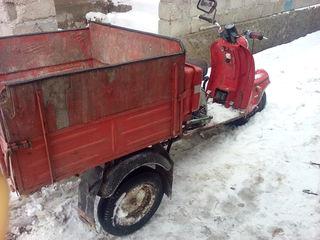 Тула muravei200