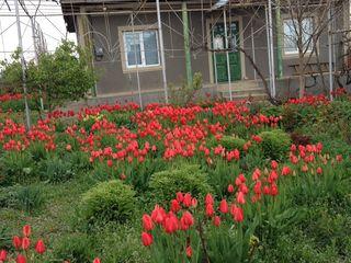 Продаётся   дом в   Дезгинже