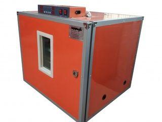 Incubator Ms-252/găină:252/rață:252/gîscă:252/prepeliță:1008/Garantie/Livrare gratuita