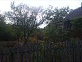 Домик -дача с садом и виноградником