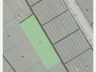 Teren agricol 1 ha 9800 eur