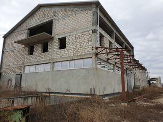 Продам территорию  0.5 га с зданиями и подвалом под промышленный объект или автосервис.
