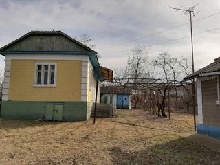 Vind casa buna si sarai bun pentru locuit in satul blesteni raionul edinet