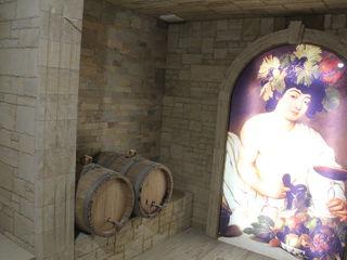 Винные погреба под ключ. Облицовка натуральным камнем Piatra naturala 3D Дизайн!!!