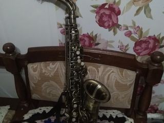 Sacsafon alto italia