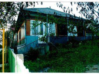 Срочно дом в Липканах