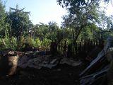 Сносим и разбираем дома,выкорчёвываем сады, расчищйаем большие территории, дачи, кооперативы...