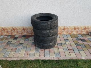 Roti ,  шины  Winter RX808 215/65 R16