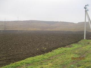 Terenuri agricole 500 ha