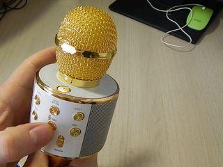 Пopтативный беспроводной каpaoкe микрофон WS 858