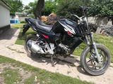 Viper r2 250cc