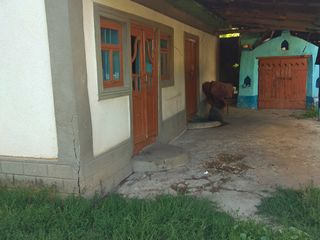 Urgent urgent casa in satul Braviceni r-ul Orhei.