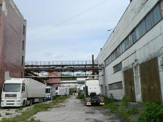 Pentru depozitare, producere, zonă industrială, suprafață generoasă!