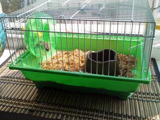 Vind cusca pentru hamster/ Продаю клетку для хомяка