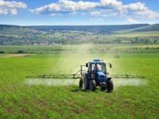 Funghicide,insecticide,erbicide,fertilizanti la cele mai convenabile preturi!!!