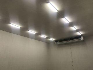 Camera frigorifica/Depozit frigorific(frigider) in arenda