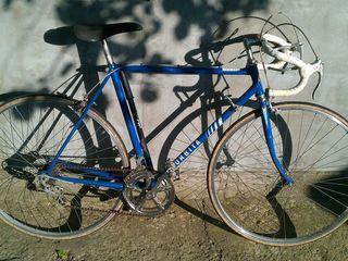 Bicicleta sportiva