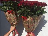 Trandafiri direct de la crescatori pret real